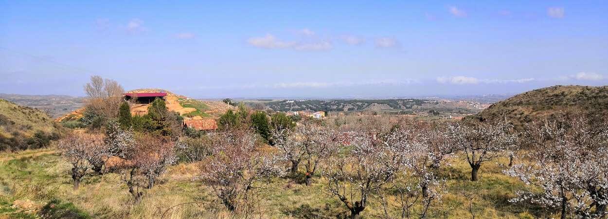 santa cruz trail blog